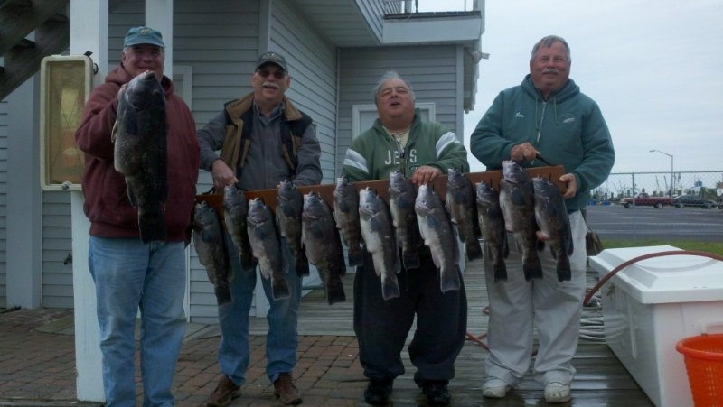 tog charter fishing offshore