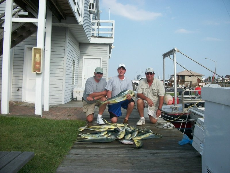 mahi and triggers ocmd offshore fishing