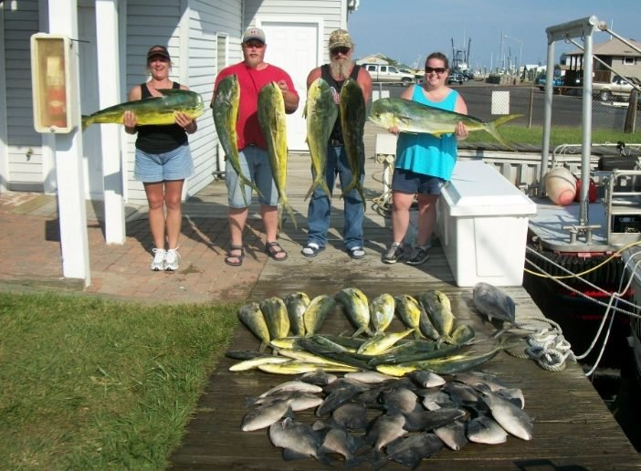 mahi and triggers offshore fishing