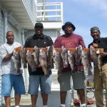 05-24-10-sea-bass-tog-and-cod.jpg