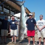 06-06-14-610-lb-thresher-shark.jpg