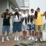 06-14-10-tog-and-sea-bass.jpg