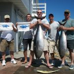 07-02-10-bluefin-tuna.jpg
