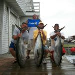 07-12-10-yellowfin-and-marlin.jpg