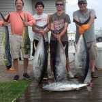 07-17-14-bluefin-yellowfin-mahi.jpg