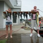 08-15-10-sea-bass-mahi-and-triggerfish.jpg