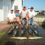 08-31-10-yellowfin-and-mahi.jpg