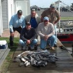 10-20-14-sea-bass-limit.jpg