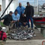 10-31-14-sea-bass-limit.jpg